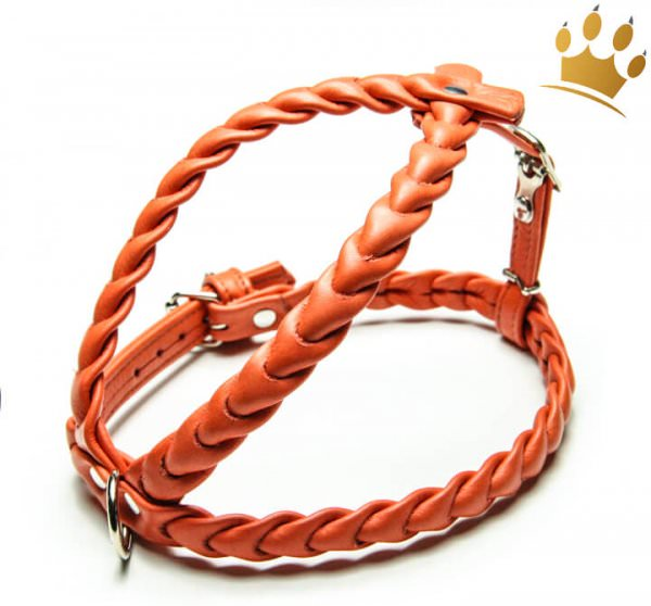 Leder-Hundegeschirr Ascot Orange