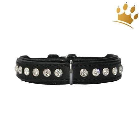 Hundehalsband Extreme Black 15mm