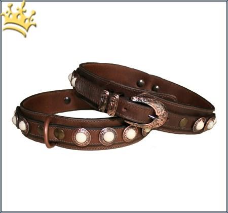 Hundehalsband Molina