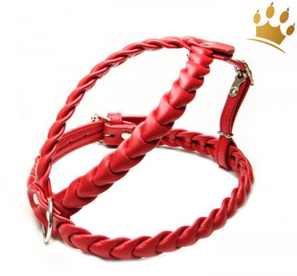 Leder-Hundegeschirr Ascot Rot