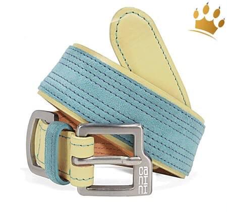 Hundehalsband Canini® Hunky Blau