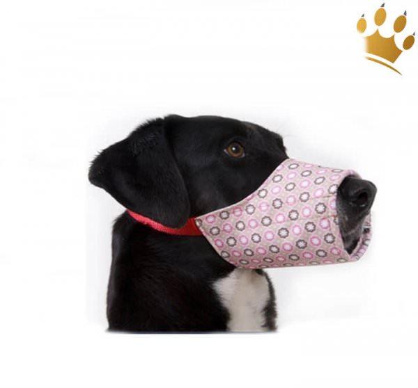 Hundemaulkorb Pink Parfait