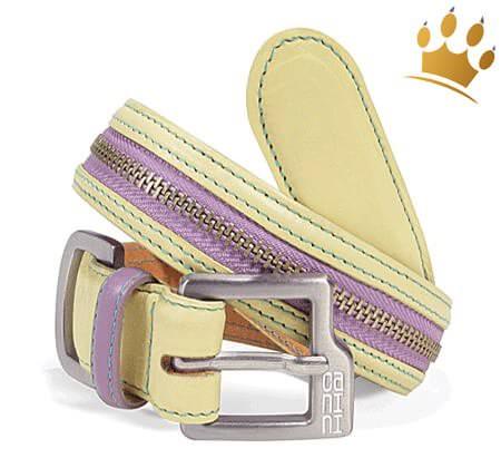 Hundehalsband Canini® Zip-a-Dee Gelb
