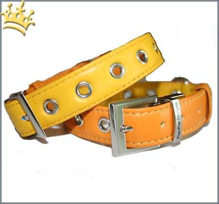 Hundehalsband PuP-PuP TM Orange/Yellow
