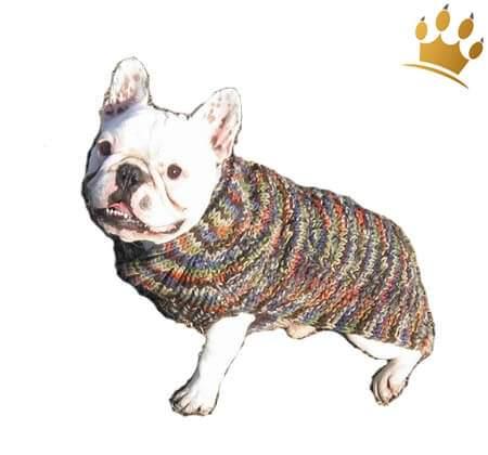 Hundepulli Cable Shawl Multi