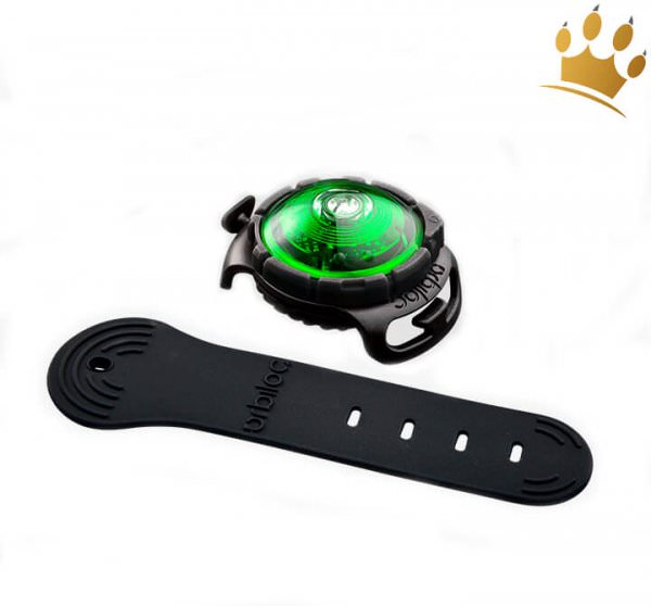 Orbiloc Leuchtbutton Dog Dual Grün