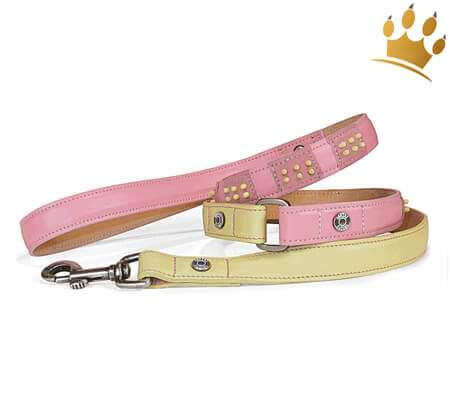 Hundeleine Canini® Dottie