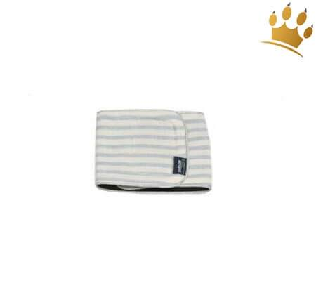 Rüdenband Blue Stripes