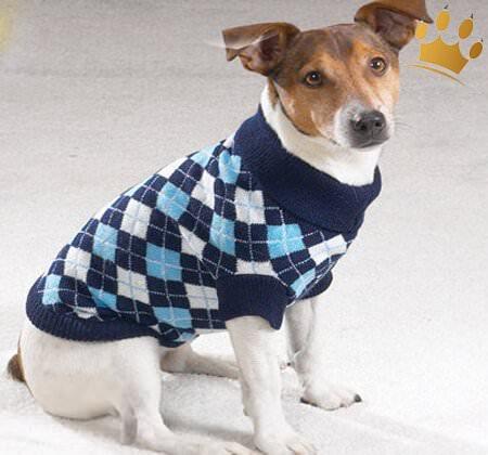 Hundepulli Argyle blau