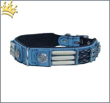Hundehalsband Blue Eagle 25mm