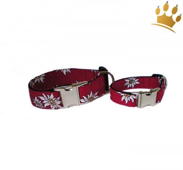 Hundehalsband Edelweiß Rot