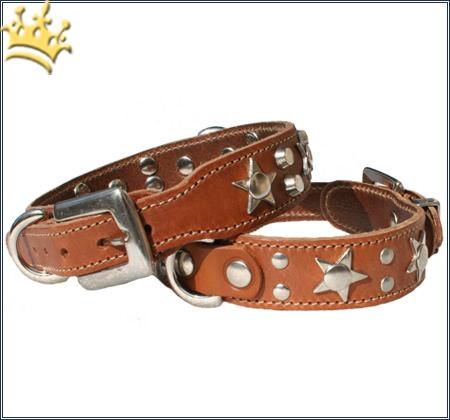 Hundehalsband Big Star Cognac