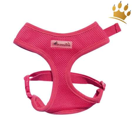 Soft Brustgeschirr Ipuppyone Air Flex Pink