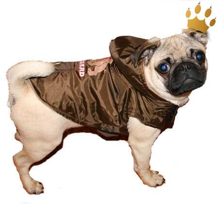 Hundemantel Bodyguard Deluxe