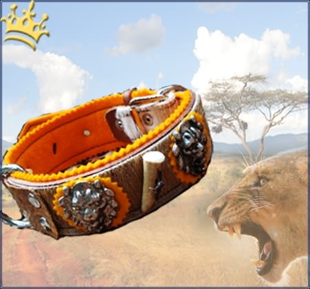 Hundehalsband African Lionhunter