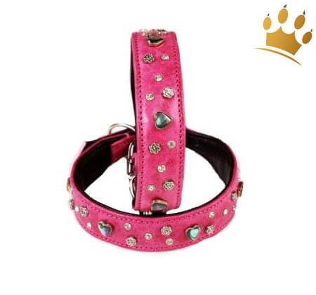 Hundehalsband Paradies Pink
