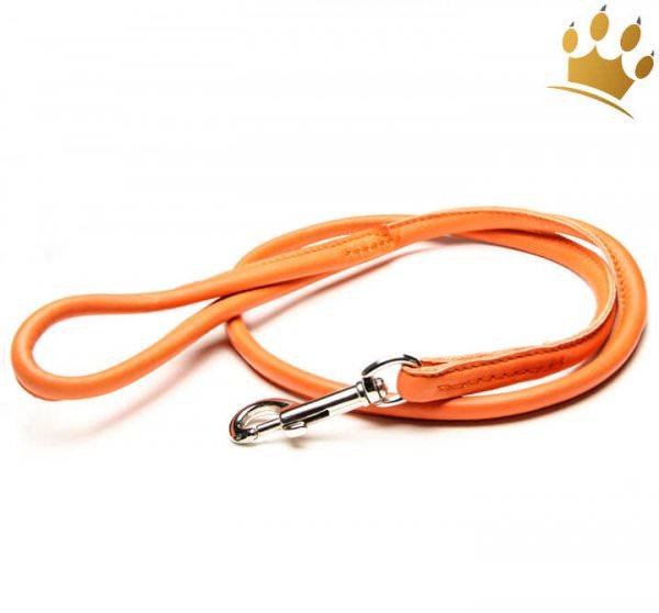 Hundelederleine Fresh Colour Rundgenäht 100cm