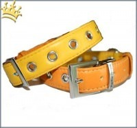 Hundehalsband PuP-PuP TM Orange/Yellow