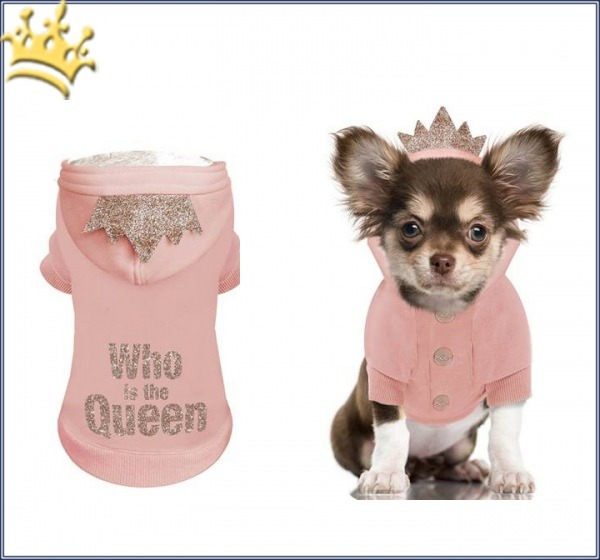 Milk & Pepper Hundesweater Alix Who is the Queen