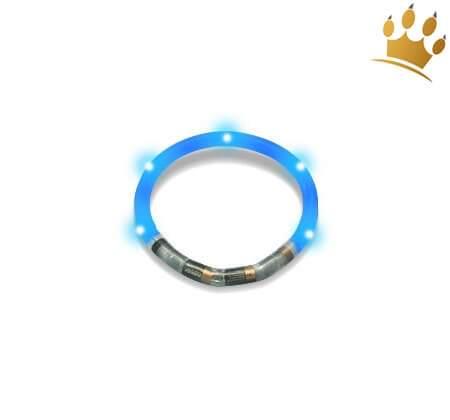Hundeleuchtring Blau