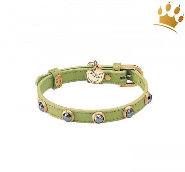 Hundehalsband Petite Appelgreen