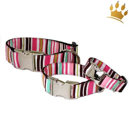 Hundehalsband A Lot Of Stripes