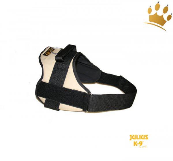 Julius-K9® Talking Power Pro earth