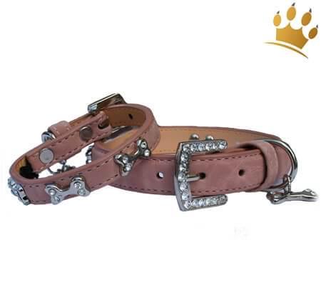 Hundehalsband Kingston Altrosé