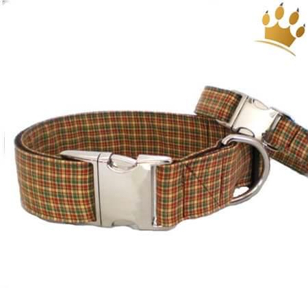 Hundehalsband British Open