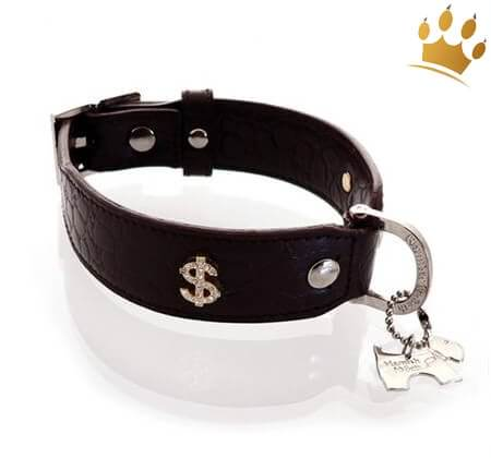 Hundehalsband Kroko Bling