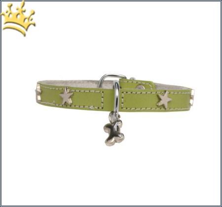 Hundehalsband Silverstar Pistazie