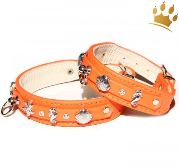 Hundehalsband Meeresbrise Orange