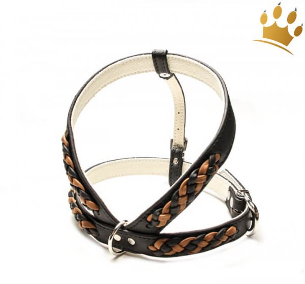 Hundegeschirr Empire Double Schwarz-Cognac