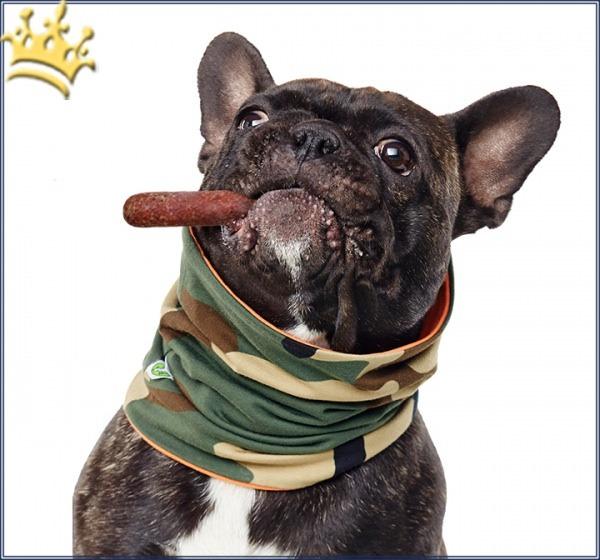 Hundeschal Duftmarke Hundeloop