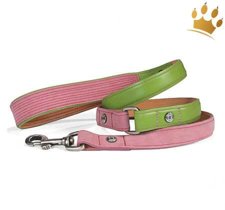 Hundeleine Canini® Hunky
