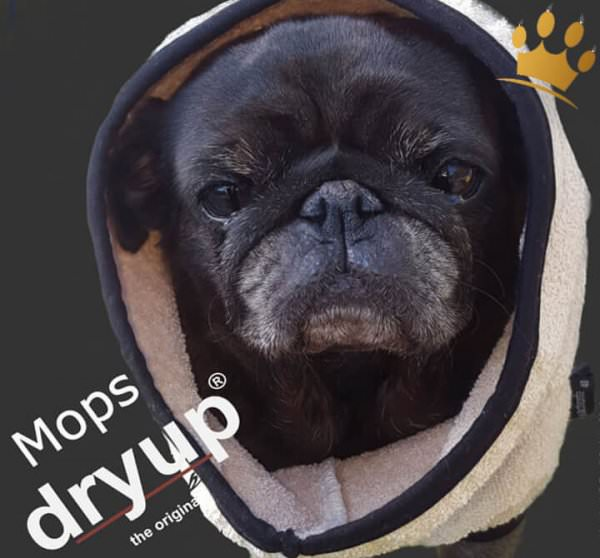 DryUp Bade-Cape Bademantel Mops Creme