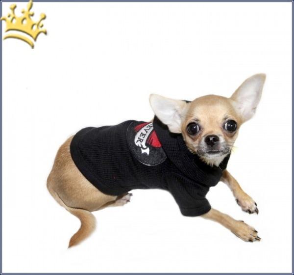 Hundesweater Forever Schwarz