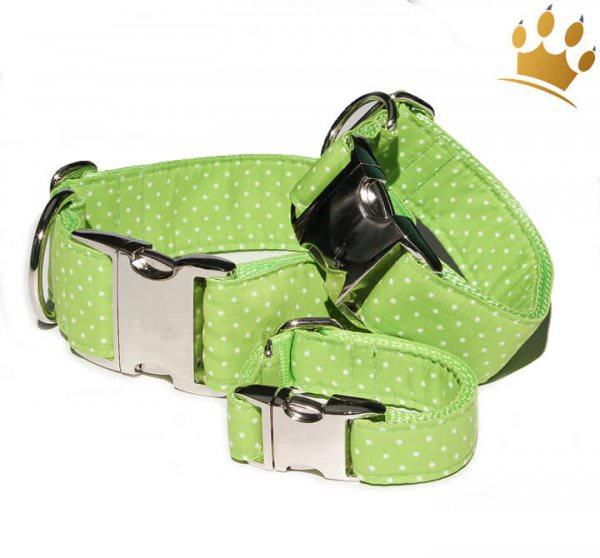 Hundehalsband Little Dotty Grün