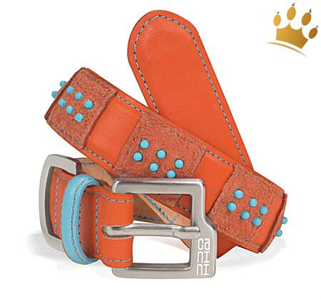 Hundehalsband Canini® Dottie Orange
