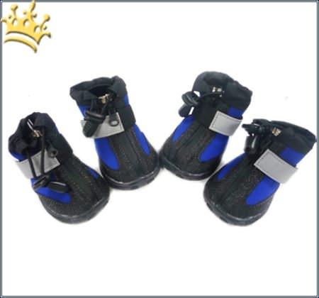 Hundeschuhe Allwetter Black/Blau