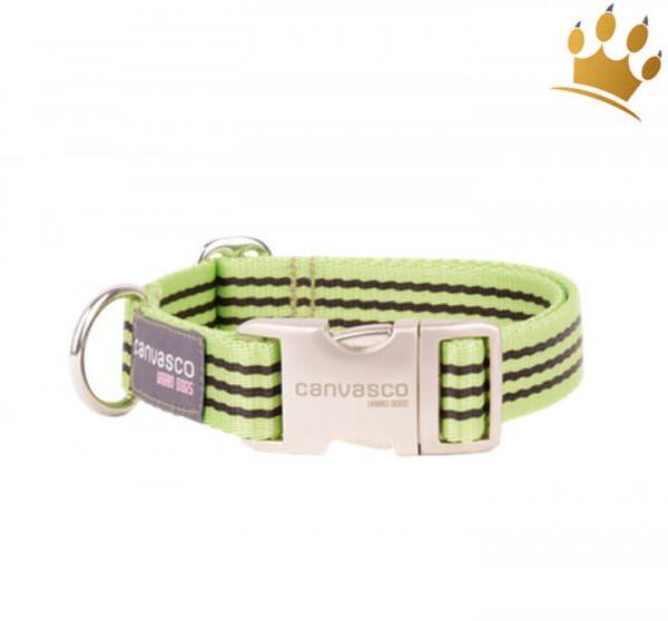 Canvasco Hundehalsband Frida Pistazie Alu Klein