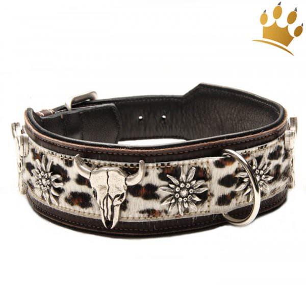 Hundehalsband Leder Wild Leo