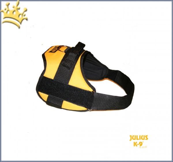 Julius-K9® Talking Power Pro maisgelb