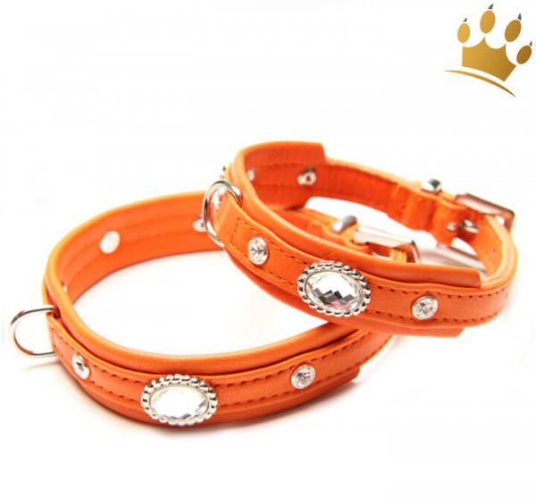 Hundehalsband Thunder Orange Petit